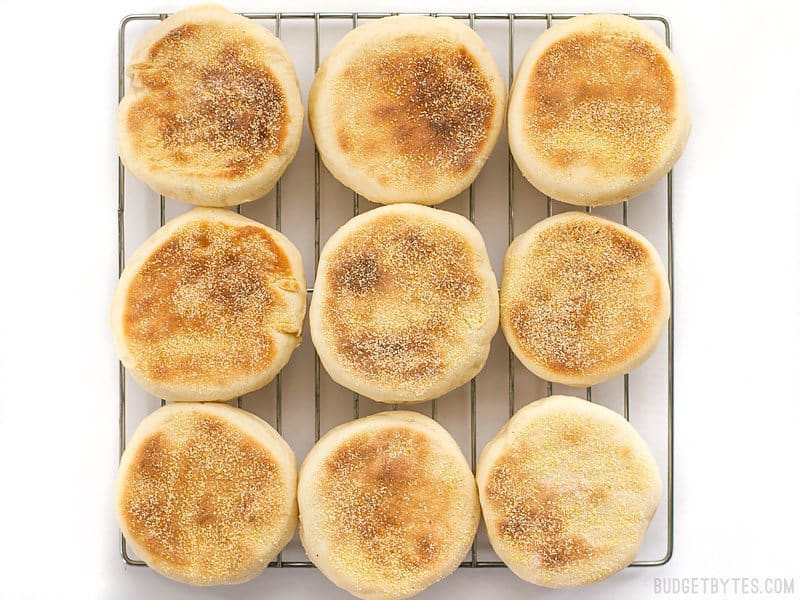 English Muffins cooling on a wire rack, from above