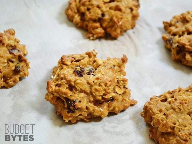 Oatmeal Pumpkin Cookies on paper towel