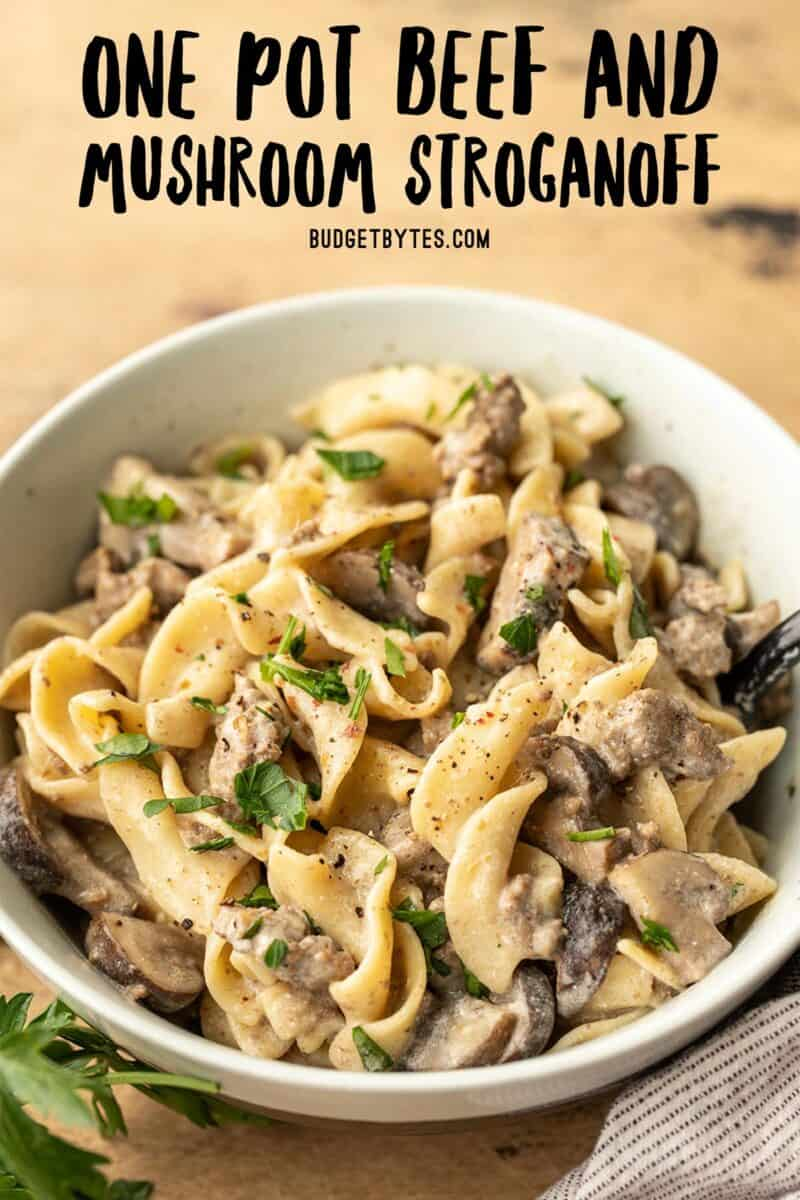 side view of a bowl full of beef and mushroom stroganoff with title text at the top