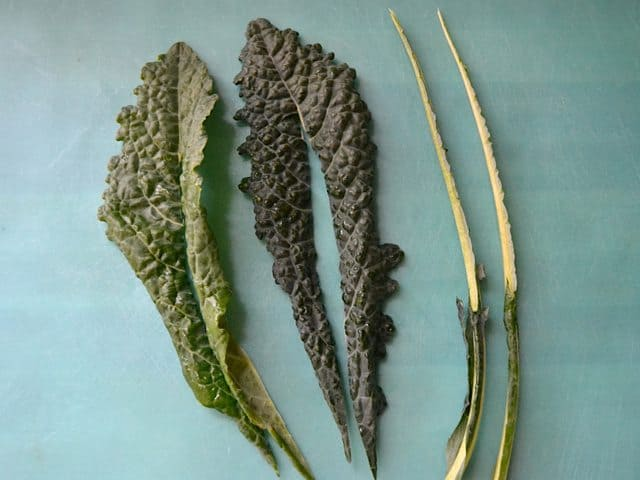 Removing stems from kale leaves