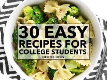 30 Easy Recipes for College Students to keep you full and energized while on the run! From breakfast to easy dinners and snacks, we've got you covered! Budgetbytes.com