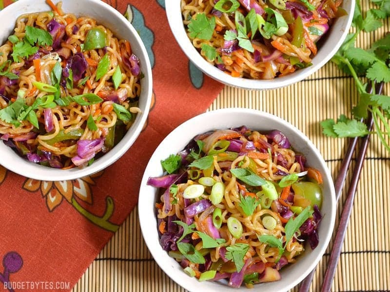 This colorful vegetable stir fry with noodles is packed with vegetables and drenched in a salty sweet sauce. Fast, easy, and customizable. BudgetBytes.com