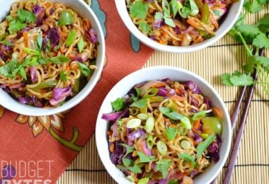 Vegetable Stir Fry Noodle Bowls - Budget Bytes