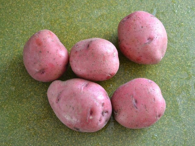 Red Potatoes for Rosemary Garlic Beef Stew
