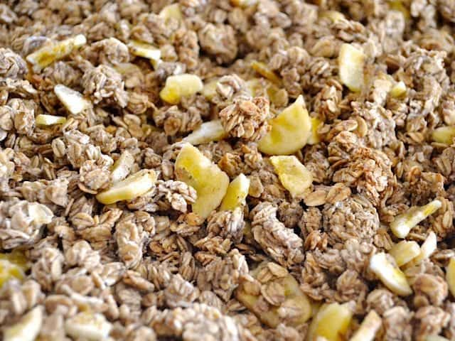 Baked Banana Nut Granola with banana chips sprinkled on