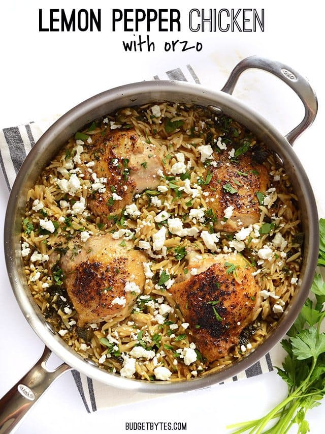 Lemon Pepper Chicken with Orzo - BudgetBytes.com