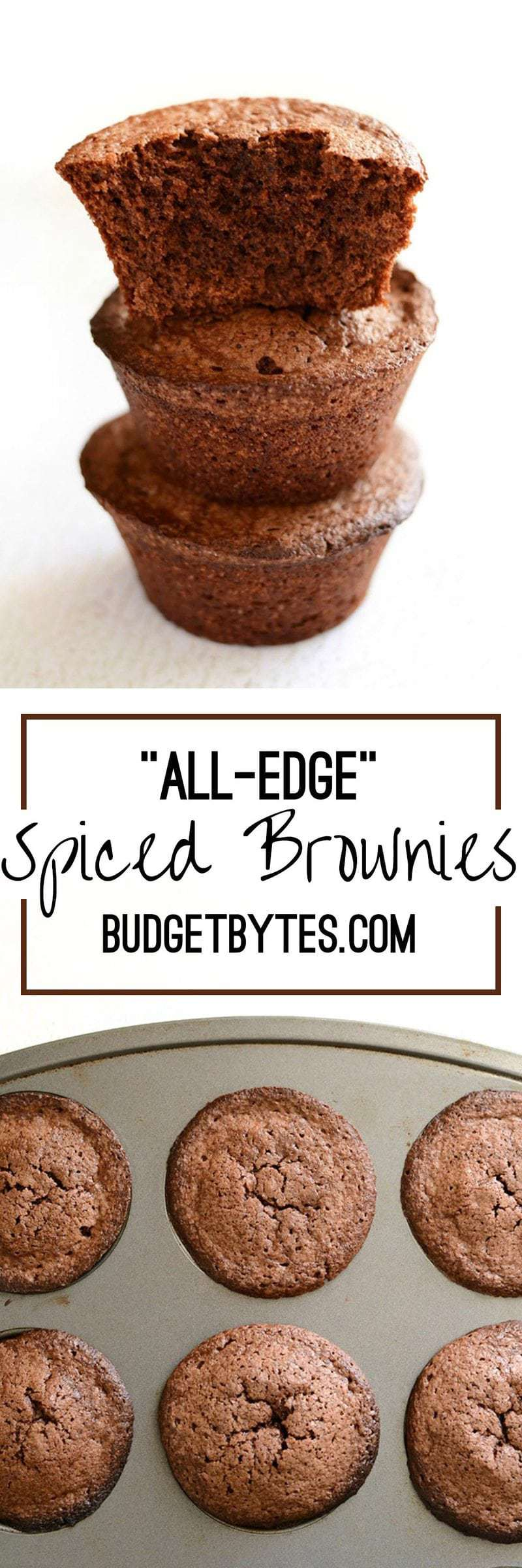 All Edge Spiced Brownies Budget Bytes