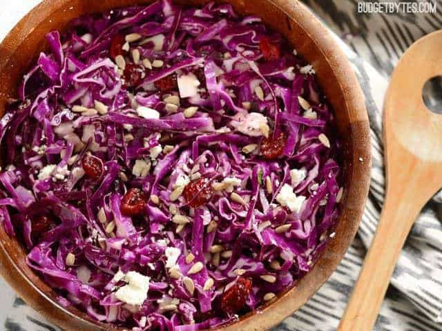 Cabbage and Cranberry Sald - BudgetBytes.com