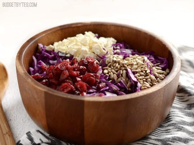 Cabbage and Cranberry Salad - BudgetBytes.com