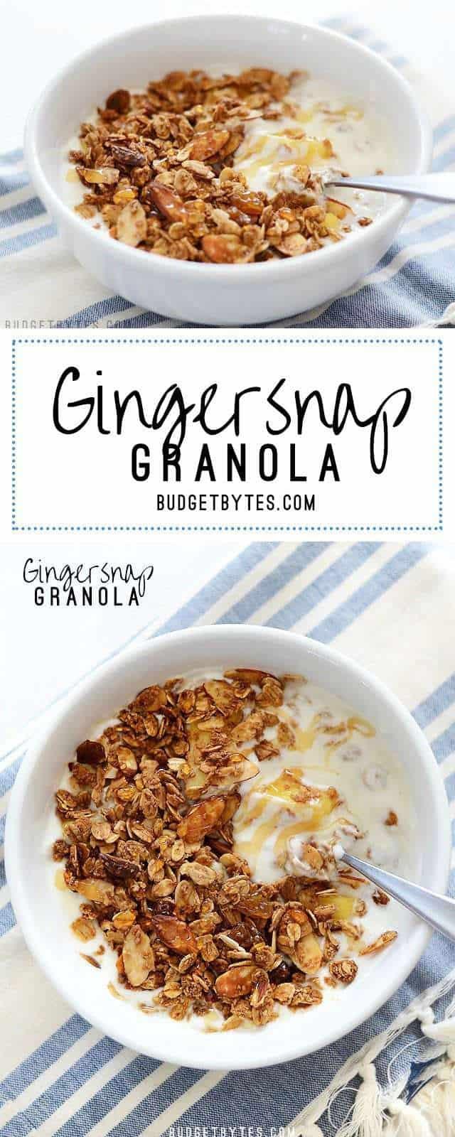 Gingersnap Granola - BudgetBytes.com