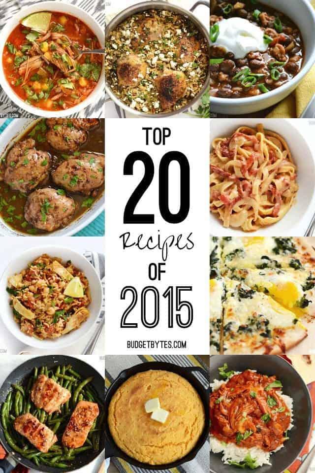 Top 20 Recipes of 2015 - BudgetBytes.com