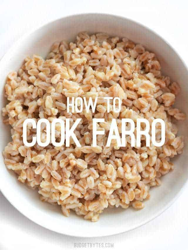 "Overhead view of a bowl full of plain cooked farro, with ""how to cook farro"" text overlay in the center"