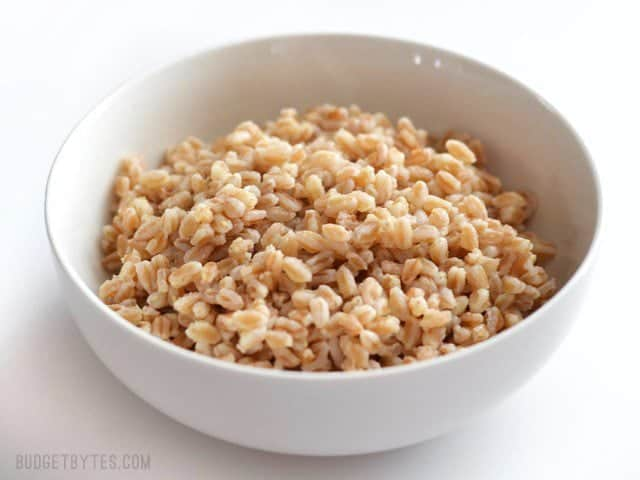Side view of a bowl full of plain cooked farro