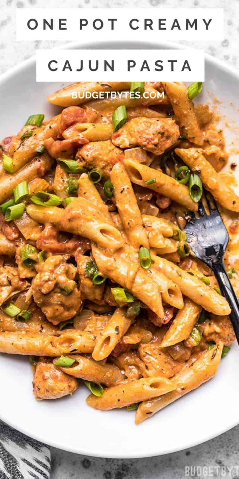 overhead view of a bowl of cajun chicken pasta