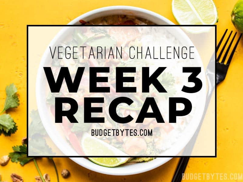 What I bought, cooked, ate, and how I felt throughout week 3 of the Vegetarian Challenge. Using up leftovers, battling stress cravings, and more! Budgetbytes.com