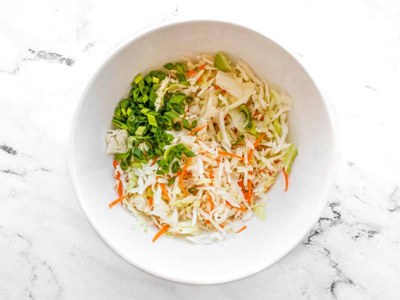 coleslaw mix and green onion in a bowl