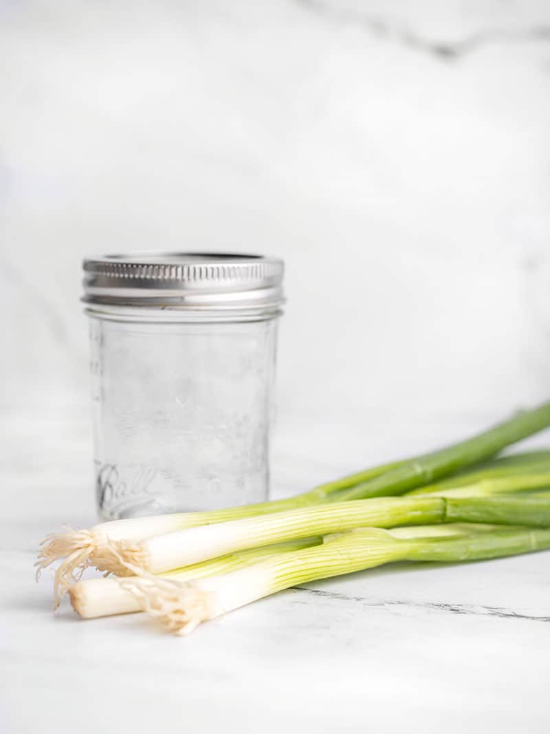 Fresh green onions laying in front of a small mason jar