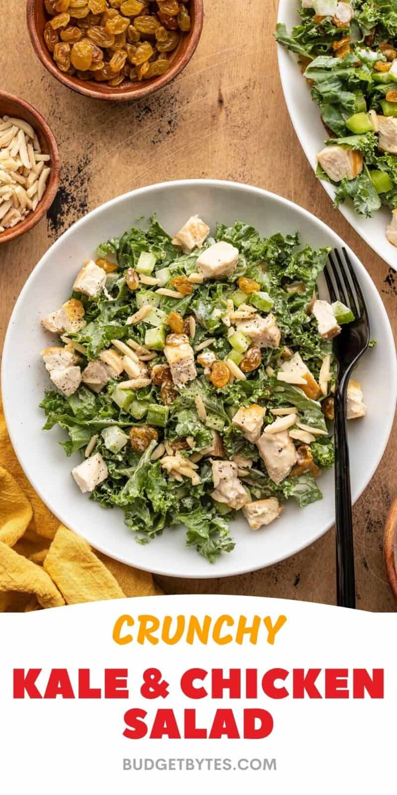 A bowl of dressed kale and chicken salad next to the serving dish