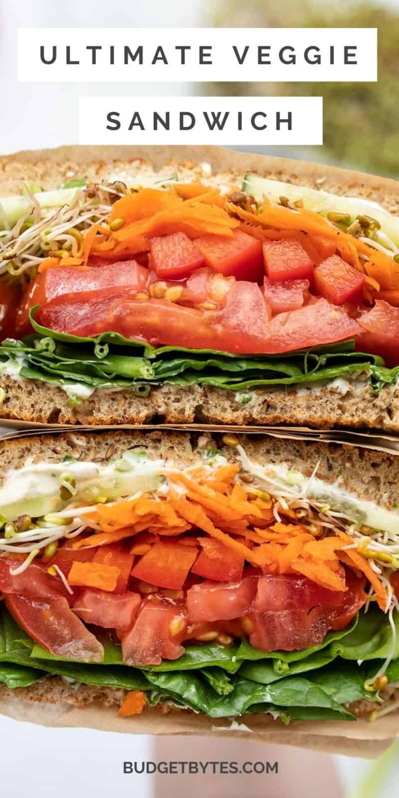 close up of a cut open veggie sandwich, title text at the top